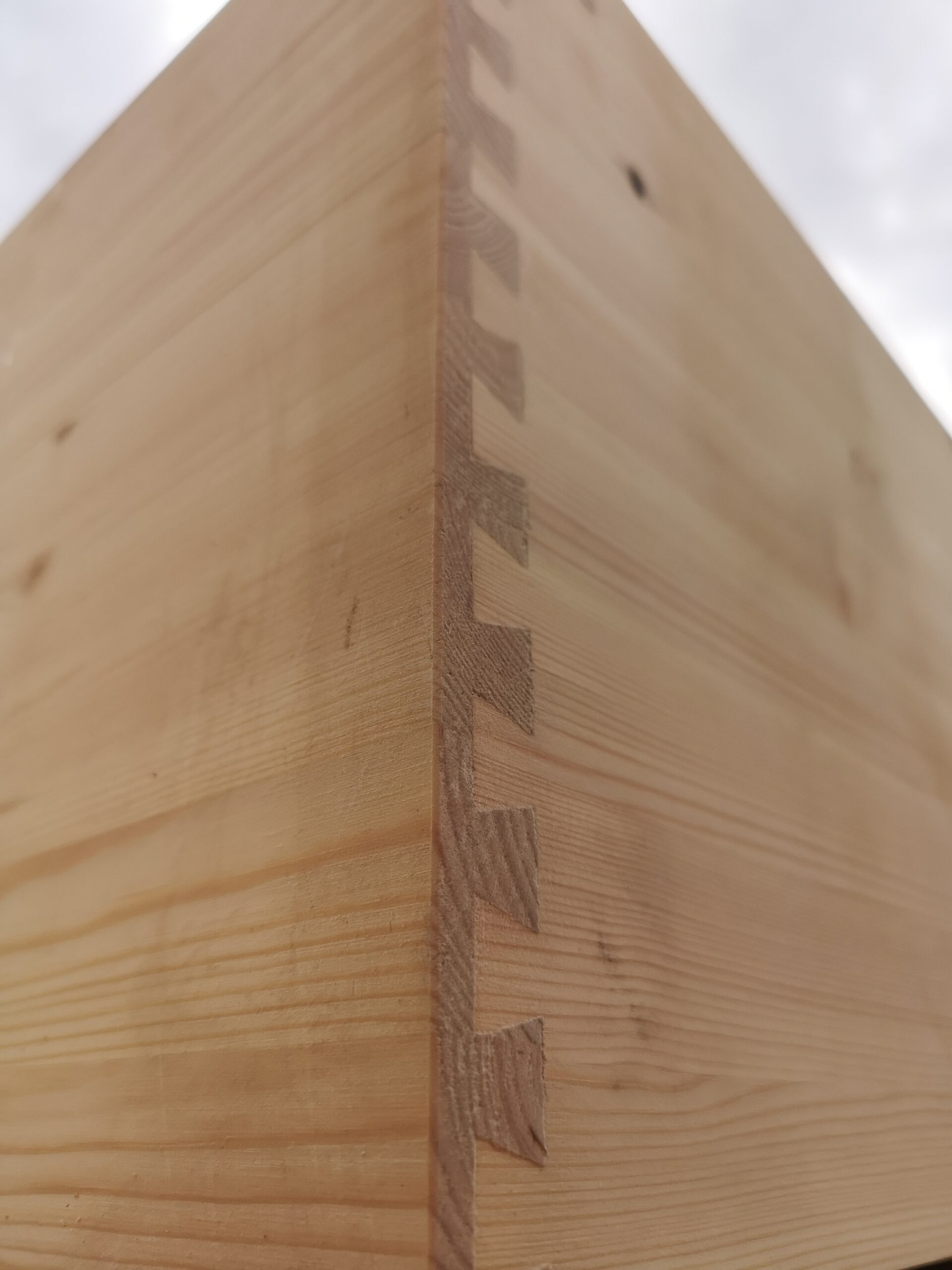 whelping box dovetail joint pine